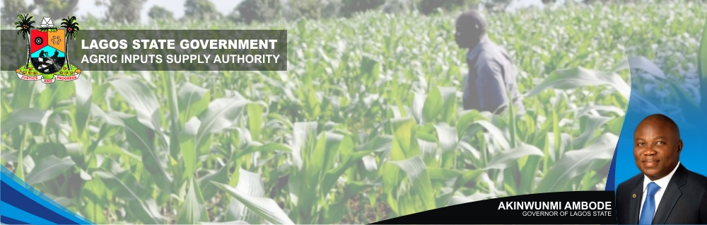 Lagos State Agricultural Inputs Supply Authority(LAISA))